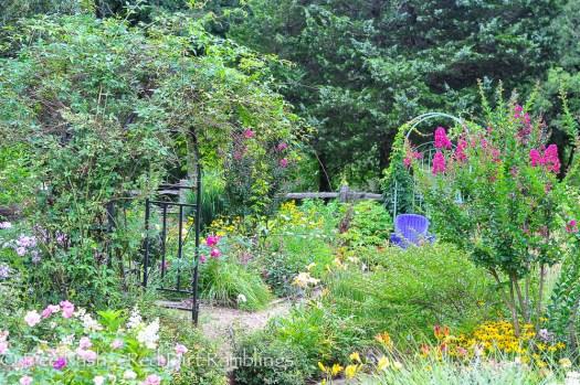 Back garden in June 2014.