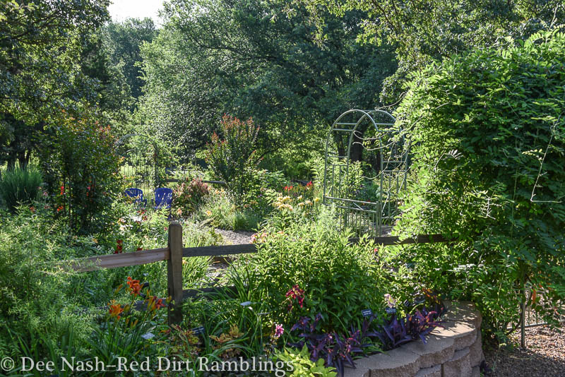 Back garden at the end of June, 2015. It's all growing so well.
