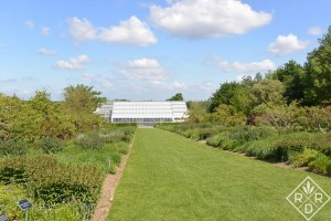 Long beds loaded with American prairie native plants.