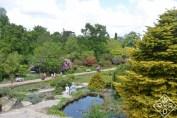 Rock garden and visitors