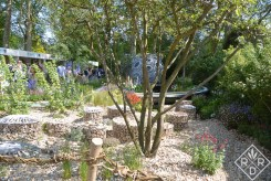 """The Brewin Dolphin Garden – Forever Freefolk was considered a garden to """"challenge."""" I liked this chalk stream that meandered through it."""