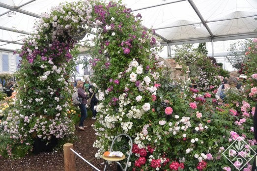 The entrance to Peter Beales' roses.