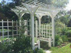 "An arbor in Eudora Welty's garden creates a sitting place and a ""room."" Her mother, Chestina, separated the garden into rooms."