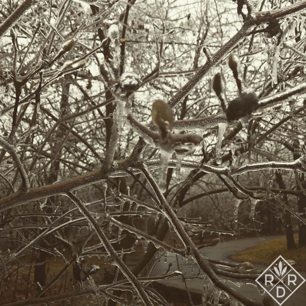 More of Mother Nature's icy grip.