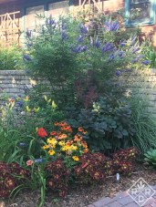 Vitex 'Delta Blues' with 'Cheyenne Spirit' and Sombrero® Flamenco Orange echinaceas.