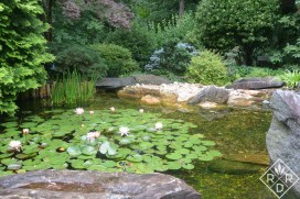Lily pond in the Japanese garden Hillwood