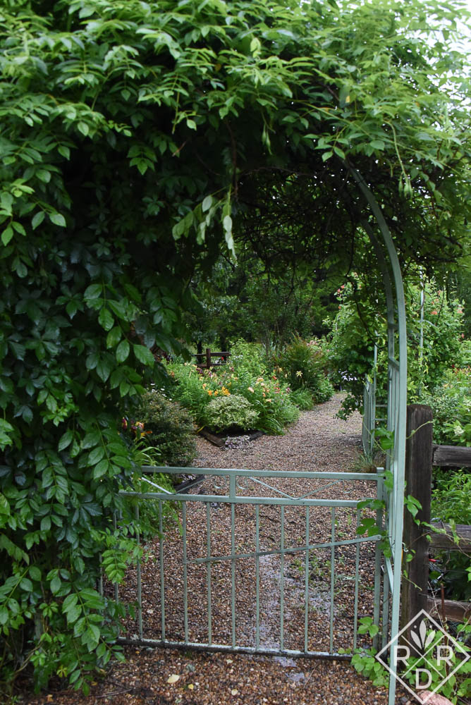 Arbor and back gate