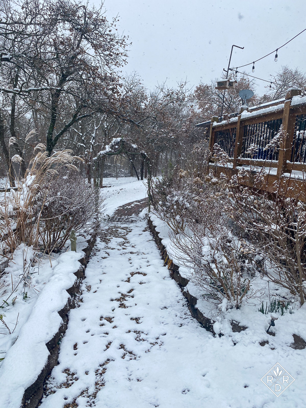Side borders below the deck with an arbor in the snow. I have five arbors around the back garden.