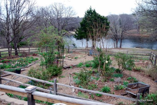 Another overview of the vegetable garden