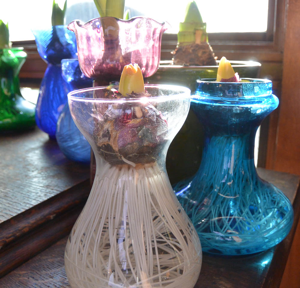 See those in front with the yellow tips? They just came out of the closet today. The vase on the left is modern. The turquoise one may be modern too, but it has the Tye type shape. It came from England.
