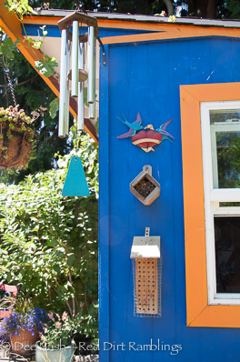 Beautiful cobalt blue for the shed in back. It has a green roof. Cobalt is my fave color.
