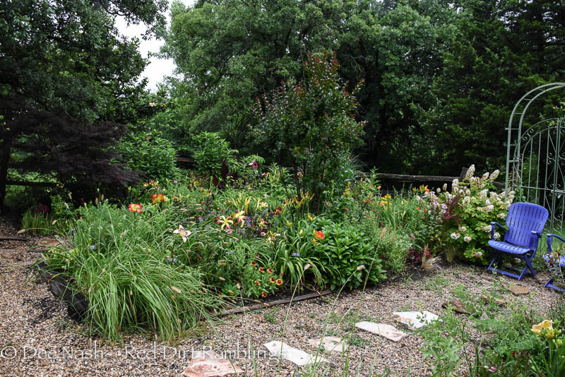 Garden Bloggers' Bloom Day. There are four long beds at the end of the back garden. I once grew veggies in them. We moved the veggie garden to another spot on the hill. This is the second long bed