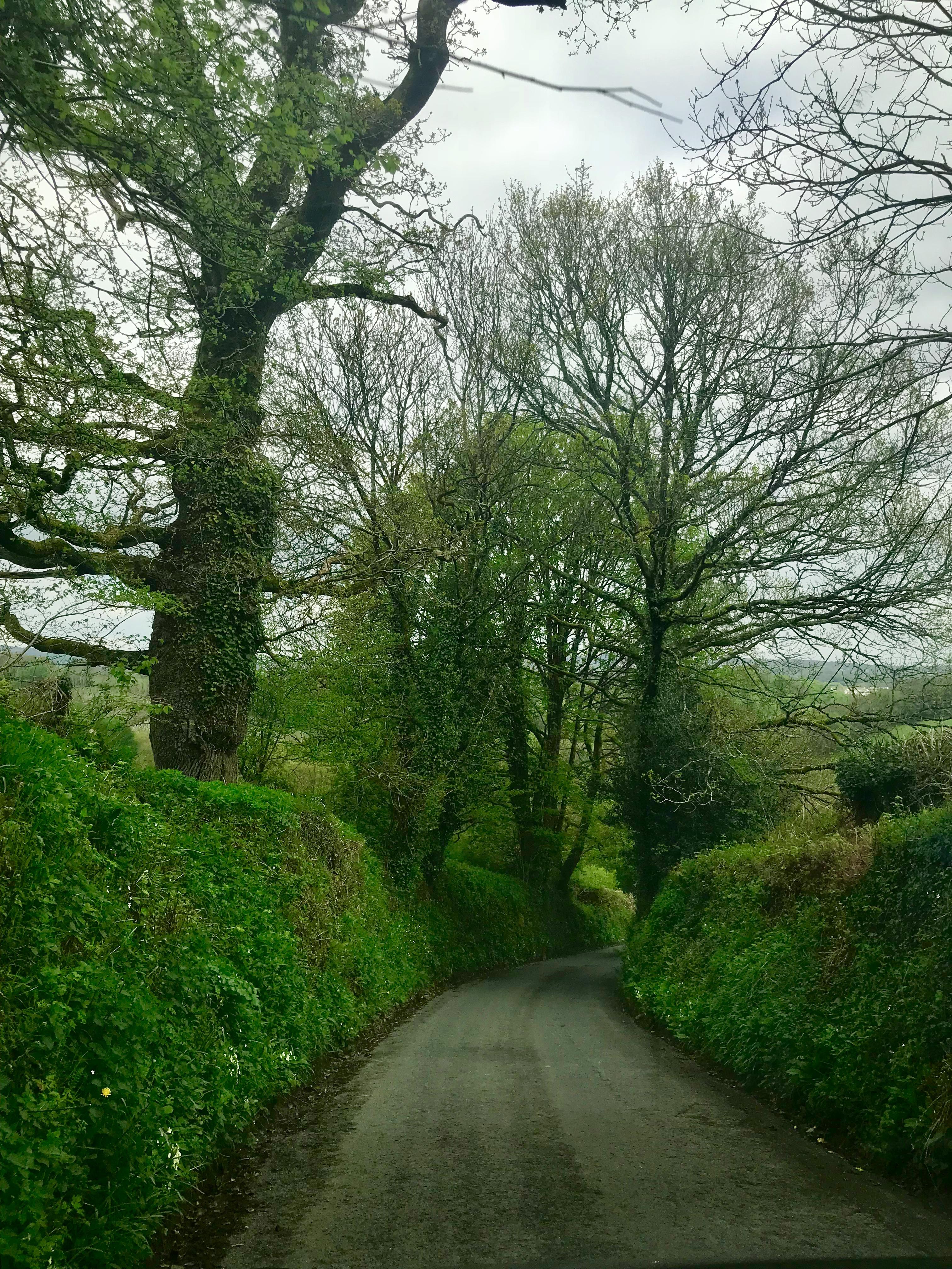 visit to Cornwall