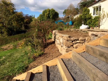 Sweet chestnut stpes & drystone wall Oct 15