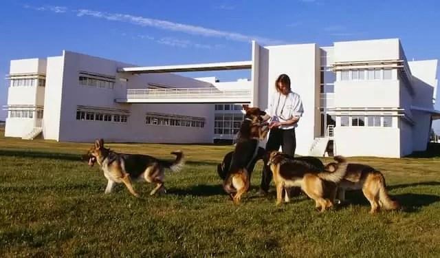 Todos juntos venceremos Royal Canin