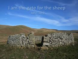 I am the door for the sheep
