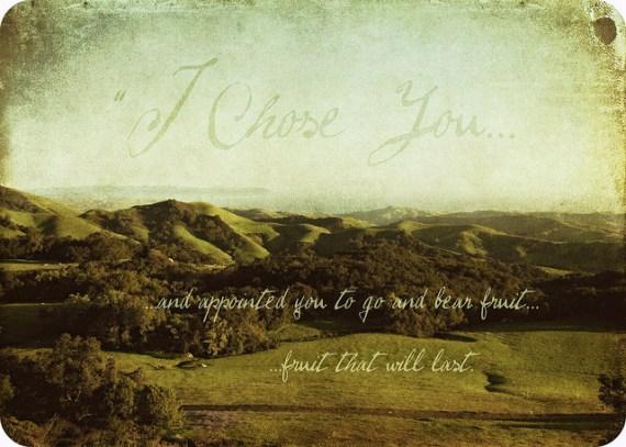 John 15:16 chosen by Jesus