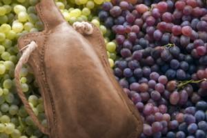 Luke 5 new wineskins