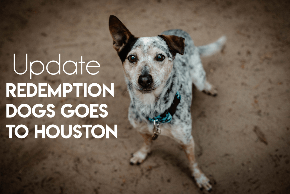 The Update: Redemption Dogs Goes To Houston