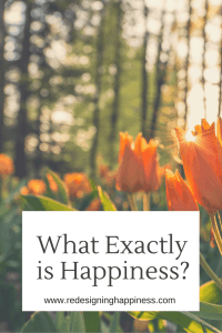 What Exactly is Happiness?