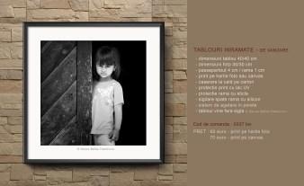 razvan emilian dumitrescu - tablouri de vanzare