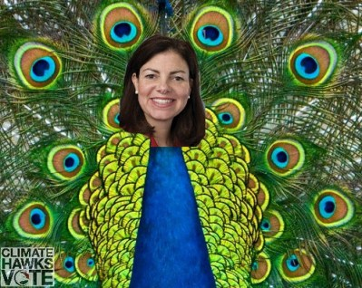 kelly ayotte, climate hawk or climate peacock?