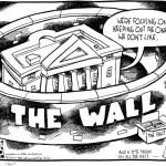 tom toles border wall vs facts