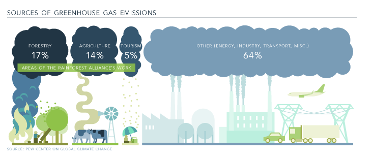 71% of global greenhouse gas emissions came from just 100 companies