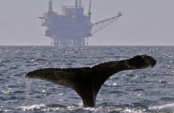 Santa Barbara drilling in MLPA by EarthFirst