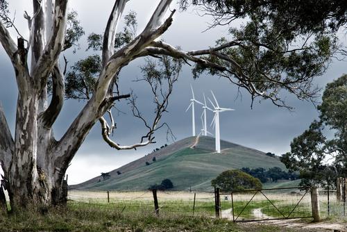 Renewable energy Australian wind farm
