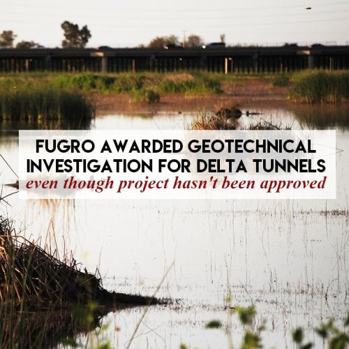 If the salmon-killing Delta Tunnels hasn't been approved yet, why is California awarding contracts?