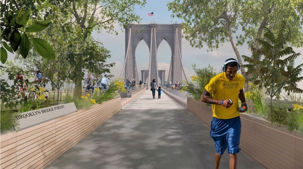 Rendering of the proposed Brooklyn Bridge Forest. Photo by Pilot Projects Design Collective