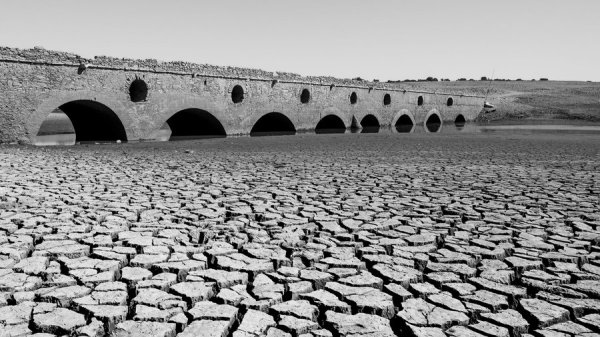 European Drought the worst in two millenia - Cambridge research