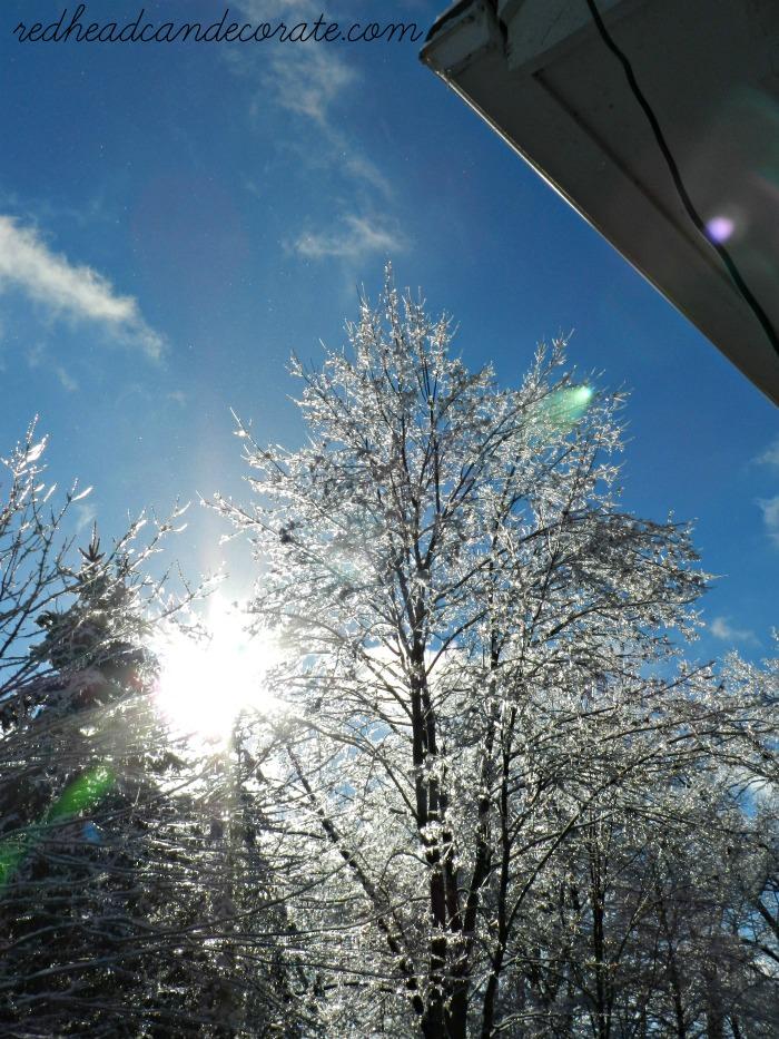 Ice Storm Photos-Beautiful