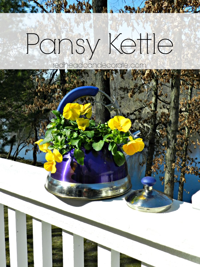 Pansy Kettle