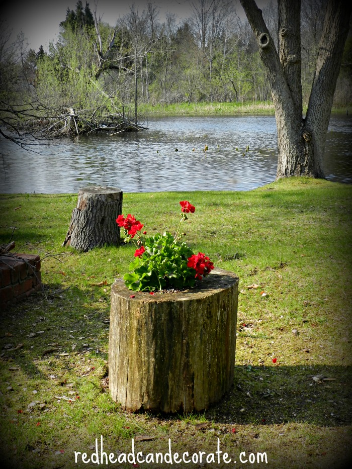Cool gardening ideas that anyone can do! Including this stump planter & many more!