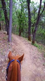 pretty trails