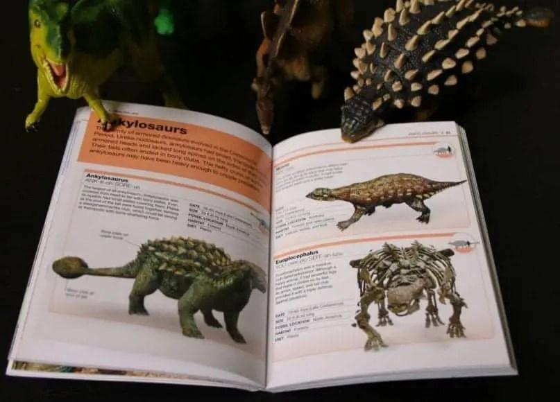 Pocket genius dinosaurs inside