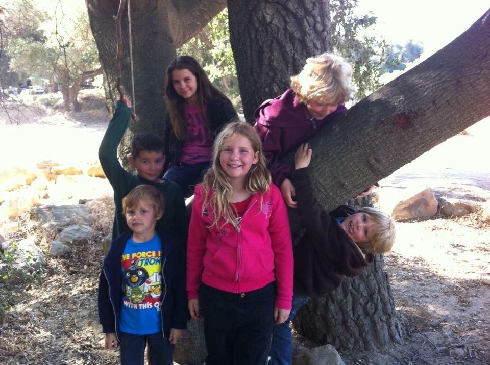 #family #trees