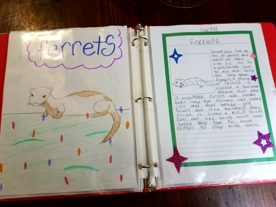 notebooking and interest-led learning