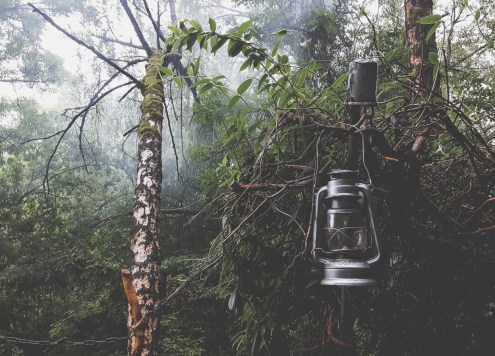 redheadventurer-liza-laboheme-travel-lifestyle-nature-day-off-civilization-lantern-forest