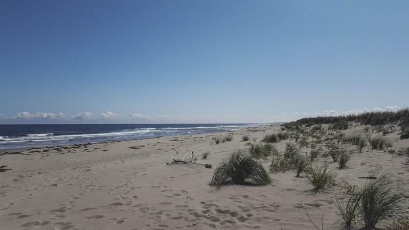 redheadventurer-liza-laboheme-beach-Kouchibouguac (11)