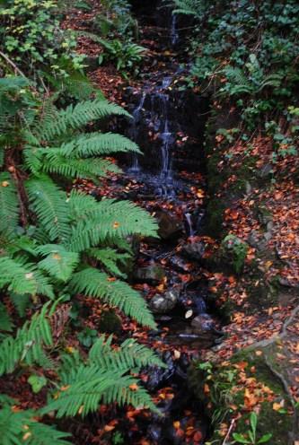 Copper stream