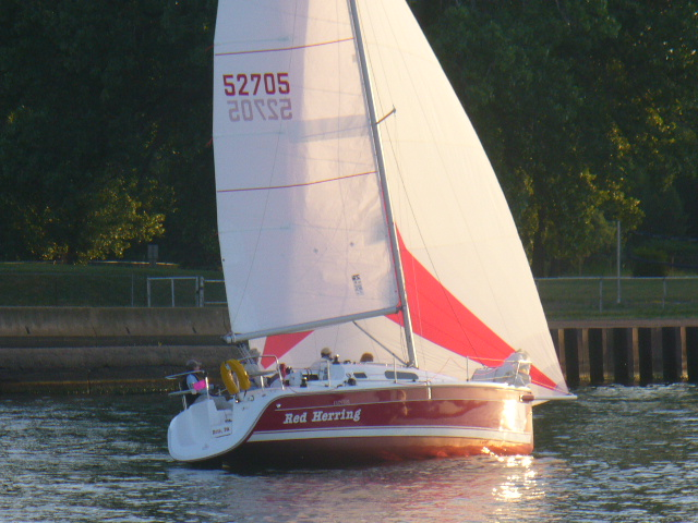 Red Herring at the start of the Interclub series