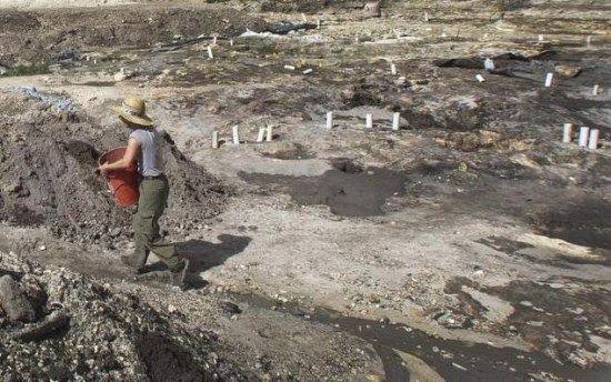 yacimiento antiguo miami