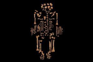 esqueleto cancer antiguo