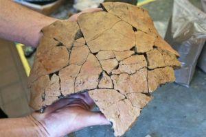 ceramica cultura lusaciana