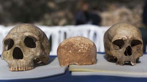 El cráneo encontrado en Manot podría pertenecer a uno de los primeros híbridos entre Neandertales y Homo Sapiens.