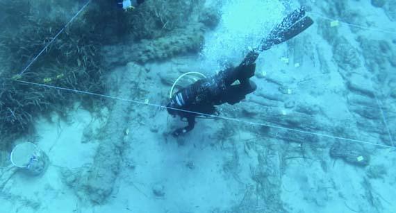 Restos del naufragio en la zona de Paralimni, en Chipre.