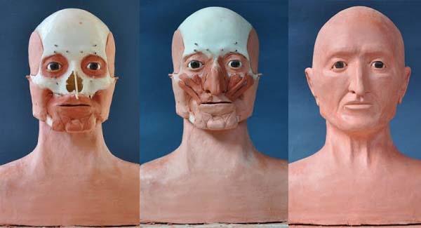 """Reconstrucción facial de la momia egipcia de """"Kent"""". Crédito: Museo Egipcio de Florencia."""